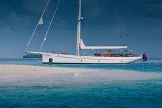 Carl Linné sailing yacht for sale.