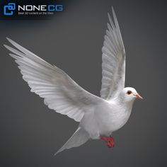 The scene includes original mesh with full Modifiers History. Different bitmaps including diffuse, specular, reflection, refraction, Dove Tattoos, Tribal Tattoos, Tattoos Skull, 3d Tattoos, Dove Drawing, Angel Prayers, Love Background Images, Extreme Close Up, White Doves