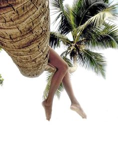 Palm art by Lorenzo Mittiga on 500px