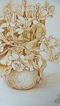 Astromelia by Luis Vargas Saavedra Pen and ink
