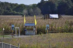 Fall Harvest Festival At Port Farms