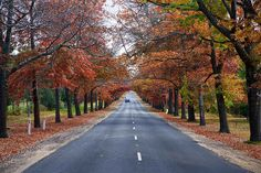 Autumn Road Trips and Pre-Winter Car Safety Tips Boredom Busters For Kids, Yoga Themes, Winter Car, Autumn Theme, Family Travel, Yoga Poses, Meditation, Spirituality, Photoshop