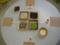 For the Children: Inspired by Nature: Seed collage with beans and such