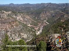 https://flic.kr/p/sF4VM7 | TURISMO EN CUIDAD JUÁREZ TE DICE CUAL ES UNA DE LAS CORDILLERAS MÁS IMPRESIONANTES DE MÉXICO.3 | Una de las cordilleras más impresionantes de México por el tamaño de sus montañas y bosques, es la Sierra Tarahumara, su principal atractivo es el Cañón del Cobre el cual es más grande que el Cañón del Colorado. El puente de partida para la mayoría de los recorridos es Creel, el recorrido tarda unas ocho horas, ofreciendo uno de los espectáculos más bellos de la…