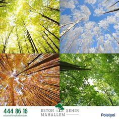 #EstonŞehirMahallem de hayatın tadını dört mevsim çıkarmak için sizleri tanıtım ofisimize bekliyoruz. #EstonŞehir #Bahçeşehir
