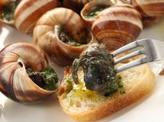 Have I pinned an escargot recipe before? Ah well, you can never have too much escargot in your life (or in your belly! Escargot Recipe, Snails Recipe, Seafood Recipes, Cooking Recipes, Great Recipes, Favorite Recipes, Yummy Food, Good Food, Garlic Butter