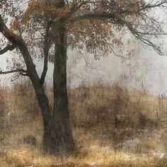 'Unyielding' by Jamie Heiden