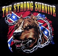Skulls and Rebel Flags | The Strong Survive Rebel Flag Pit Bull Dog T ...