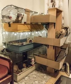 21 The Best Hamster House You Can Create Now - Meowlogy Diy Guinea Pig Cage, Guinea Pig Hutch, Guinea Pig House, Pet Guinea Pigs, Guinea Pig Care, Pig Habitat, Hedgehog Cage, Guinea Pig Bedding, Hamster Cages