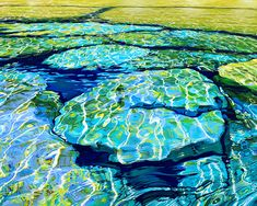 Shoreline, Isthmus Bay, Bruce Peninsula, oil on canvas, 4ft x 5ft