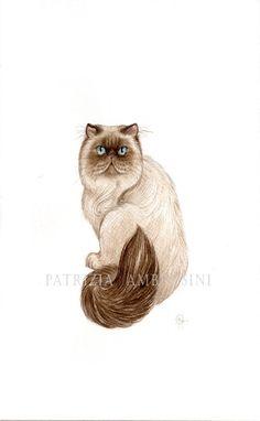 Handpainted  7x9 Watercolour Persian Cat by happyapplebumblebee,
