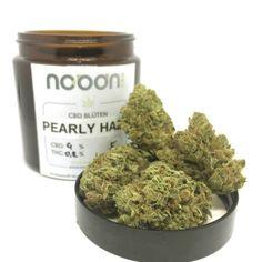Pearly Haze CBD Blüte 4%  EU Bio Nutzhanf eingetragen im EU Sortenkatalog!  Aus biologischem INDOOR Anbau!  (CBD-reiche Cannabis Sativa Blüte)  THC-arm (<0,2%). CBD + CBDA bis zu 4%.  Aroma: Fruchtig, Haze  ! unter 0,2% THC !  -Zertifikate liegen im Shop auf. -Nicht zur Einnahme empfohlen, Verwertung untersagt!  Laut Agentur für Ernährungssicherheit (AGES), in Österreich nicht zum Verzehr zugelassen Cannabis, Dog Food Recipes, Pear, Almond, Hemp, Pool Chairs, Ganja, Dog Recipes, Almond Joy