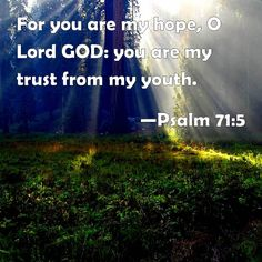 Psalm 71:5 For you are my hope, O Lord GOD: you are my trust from my youth.