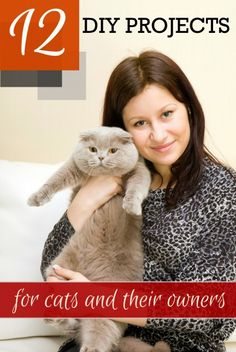 12 DIY Projects for Cats and Their Owners ~ Tipsaholic.com #cats #pets #cattoys