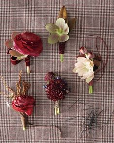 "See the ""Boutonnieres to Enliven His Lapel"" in our Wedding Colors: Wine and Greige gallery"