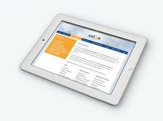 Salaris Adviseurs Oost Nederland: Website ontwerp