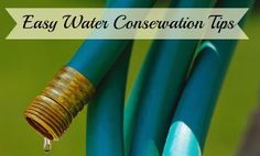 Water Conservation Tips In Honor Of World Water Day!