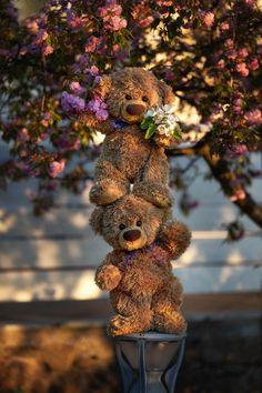 Jumbo Teddy Bear, Cute Teddy Bear Pics, Teddy Bear Quotes, Teddy Bear Images, Teddy Bear Party, Teddy Bear Pictures, Cute Bears, Tatty Teddy, Bear Wallpaper