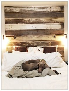 DIY headboard. Reclaimed wood & pipe lamps