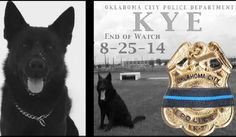Police dog killed in line of duty receives funeral with full honors.