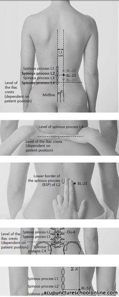 Akupunkturpunkte im unteren Rücken
