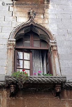 gothic-windows-n-flowers-2.jpg archways, croatia, europe, flowers, gothic, images, porec, structures, vertical, windows