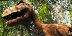 Visit Glen Rose - Twenty acre Dinosaur World features more than 100 life-size dinosaurs along a winding walkway.  Fun for the entire family.