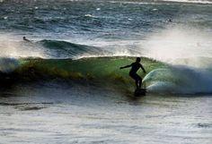 Cairns, Hostel, National Geographic, Trekking, Whale, Surfing, Australia, Travel, Animals