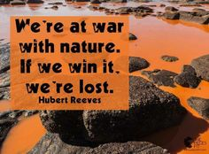 End the war against nature.