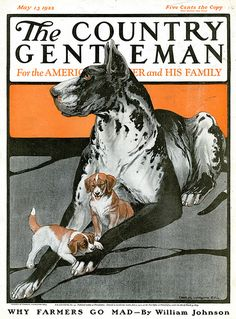 "Charles Livingston Bull, ""Great Dane and Puppies,"" The Country Gentleman cover art, May 1923 Bronx Zoo, Old Magazines, Vintage Magazines, Vintage Country, Livingston, William Johnson, Art Auction, Animal Paintings, Anos 80"
