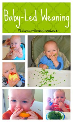 Baby-Led Weaning: A Simple Approach to Solid Food Introduction. This lady writes an excellent reasoning behind the concept.
