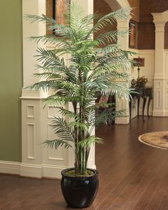 {$tab:description} Add casual elegance A regal artificial palm tree with the perfect balance of delicate fronds, natural coco fiber and palm stems. Live palms of this size require extensive maintenance and yearly replacement. Our lifelike silk beauty will remain beautiful for many years, saving you money and time. Ship/Shape Trees are potted in plastic liners. They Ship economically via ground service because the branches are efficiently packed, reducing the size of the shipping carton, ...