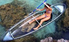 "Next time in ""Baja"" or Baja California Sur, try a transparent Kayak.. perfect for the amazing views in Mar de Cortes."