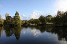 Wandsworth Pond