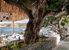 Seasalt & Rosemary Hotels In Crete Greece, Outdoor Furniture, Outdoor Decor, Restaurant Bar, Plants, Restaurants, Destinations, Outdoors, Summer