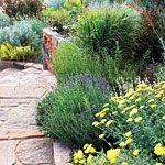 Garden Awards Blooming staircase