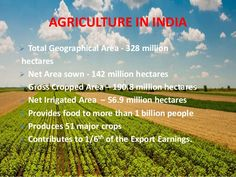 Role Of Agriculture in Indian Economy India In World, Agriculture In India, Future Of India, Sugar Industry, Veterinary Colleges, Green Revolution, Indian Family, Forced Labor, State Government