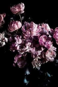 Interview with Hürriyet Bulan Stick On Wallpaper, Flower Wallpaper, Iphone Wallpaper, Peony Painting, Watercolor Flowers, Pretty Flowers, Pink Flowers, Purple Peonies, Peony Arrangement