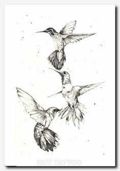 Ideas for humming bird design beautiful tattoos Tattoo L, Back Tattoo, Body Art Tattoos, Tattoo Bird, Three Birds Tattoo, Fox Tattoos, Tattoo Music, Tattoo Tree, Raven Tattoo