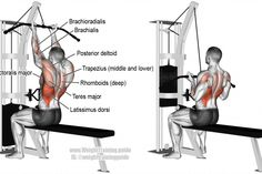 Reverse-grip lat pull-down exercise