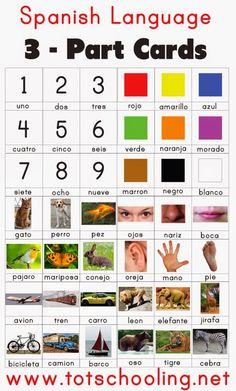 Spanish Language 3 Part Cards