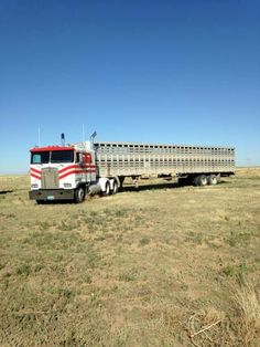 Kenworth and Single Deck All Truck, Big Trucks, Livestock Trailers, Horse Barn Plans, Cattle Drive, Ranches For Sale, Road Train, Cab Over, Show Trucks