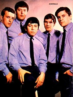 Eric Burdon and the Animals Classic Blues, Classic Rock, Music Clips, Music Bands, The Magical Mystery Tour, 20th Century Music, Rock And Roll History, Eric Burdon, Acid Rock