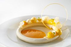 Coupe du Monde 2013 - Team Belgium's plated dessert - The Chicago School of Mold Making #beautiful #desserts