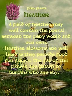 Fairy plants - thyme a place for the fae folk фея, огород Fairy Quotes, Fairy Tree, Flower Fairies, Fairies Garden, Real Fairies, Garden Art, Garden Ideas, Love Fairy, All Nature