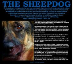 The Sheepdog pixels Police Officer Wife, Military Police, Police Cops, Service Dog Training, Service Dogs, Police Quotes, Police Lives Matter, Police Life, Real Hero