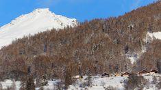 Grange Horres e Testa del Bän (Bardonecchia) ---------- 📸 Alberto Blisa #myvalsusa #fotodelgiorno 1825 - 29 dicembre 2020 Snow, Outdoor, Outdoors, Outdoor Games, The Great Outdoors, Eyes, Let It Snow