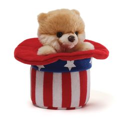 Gund Itty Bitty Red, White and Boo Plush: The Itty Bitty Boo collection features a version of the World's Cutest Dog all dressed up. They are too cute to resist and you will want to collect them all! Boo The Cutest Dog, World Cutest Dog, Cute Husky Puppies, Cute Dogs, Puppies Tips, Toy Pomeranian, Getting A Puppy, Cute Plush, Pom Poms