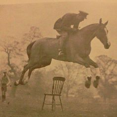 Cavalry jump. Most horses would've gone around this chair, but the rider got the horse to focus on jumping the chair, and without a bridle.