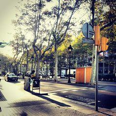 #barcelona #granvia #urgell #city #ciutat #trees #arbres #citycenter #rushhour #traffic #trafficjam #semafor #instagramers #instapic #instagramhub #instaphoto #pictureaday #routine #galaxynote #timegoesby
